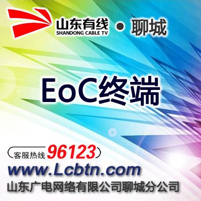EoC终端(仅限平博app市区、拍前先咨询96123)